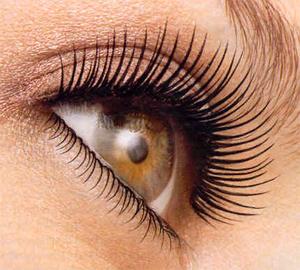 eyelash_primer